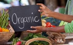 Thực phẩm hữu cơ: Những điều cần biết