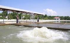 Yêu cầu vận hành cấp nước đủ cho thành phố Đà Nẵng