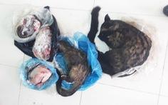 Bán thịt thú rừng qua Facebook, bị phạt 6 triệu đồng