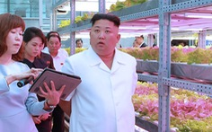 Bí mật về tỉ giá hối đoái của Triều Tiên