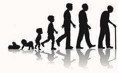 Con người có thể sống tối đa bao nhiêu năm?