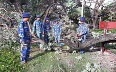Huyện đảo Trường Sa không bị thiệt hại nhiều trong bão số 9