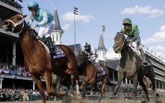 Trường đua ngựa Sóc Sơn sẽ đóng thuế trăm triệu đôla?