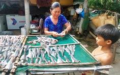 Những mùa cá đồng miền lũ - kỳ cuối: Làm gì để bảo tồn nguồn cá đồng?