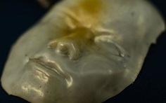 Vật liệu 'siêu đàn hồi' có thay đổi hình dạng theo nhiệt độ