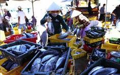 Công bố nhãn hiệu 'Cá ngừ đại dương Bình Định'