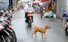 Đề xuất quản lý chó nuôi ở Hà Nội bằng phần mềm
