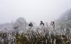 Không khí lạnh tràn về Bắc Bộ, có thể mưa tuyết ở vùng núi cao