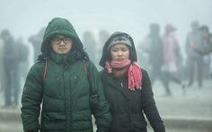 Tết Dương lịch là đỉnh điểm của đợt rét, không ra đồng khi nhiệt độ dưới 12 độ C