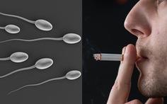 Cha hút thuốc, con trai giảm khả năng sinh sản