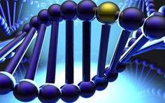 Đầu tư 4,5 triệu USD nghiên cứu giải mã gen người Việt