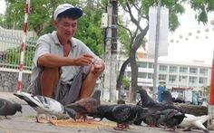 Người nuôi chim trời giữa lòng  thành phố
