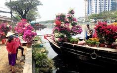 Dân Sài Gòn đủ chợ hoa để chưng tết