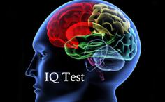 Đầu năm test IQ 'tập thể dục' bộ não
