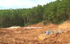 Vỡ đập thải nhà máy vàng ở Bồng Miêu, cá chết đầy sông