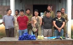 Phối hợp với Lào phá đường dây ma túy xuyên biên giới