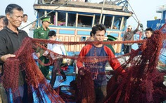 Tàu cá Quảng Nam bị 'tàu lạ' tấn công, phá ngư cụ
