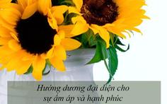 Ý nghĩa của các loài hoa tặng người phụ nữ ta thương