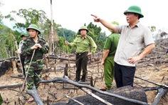 Xót rừng bị phá, nửa đêm phó chủ tịch tỉnh viết tâm thư gửi kiểm lâm