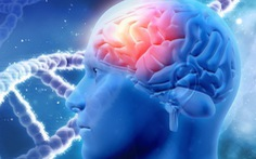 Tổn thương não nhẹ cũng tăng nguy cơ bệnh Parkinson