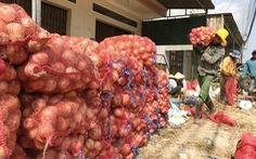 Mỗi nông dân sẽ có thu nhập 66 triệu đồng/năm