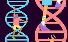 Vì sao không nên kiểm tra IQ bằng xét nghiệm gene