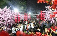 Bạn trẻ Huế thích mê 'check in' vườn hoa anh đào
