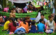 Người Sài Gòn mắc võng trốn nắng ở Thảo cầm viên