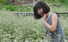 Mê cung khổng lồ, hoa tam giác mạch hút giới trẻ thủ đô