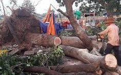 1 người chết, 200 nhà hư hỏng trong lốc xoáy bất ngờ tại Đắk Lắk