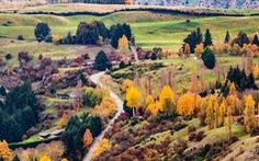 New Zealand - mùa thu mê đắm lòng người
