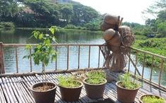Nhà nổi thân thiện môi trường giữa hồ nước ĐH Quốc gia