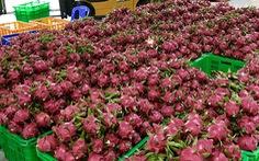 MM Mega Market Việt Nam xuất khẩu nông sản sang Thái Lan