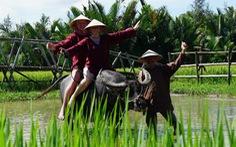 Biến nông thôn thành điểm đến hấp dẫn du khách