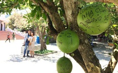 Trái cây trong chùa chằng chịt 'cầu mong trúng số'