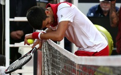 Sharapova leo cao, Djokovic trượt dài