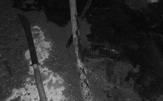 Truy bắt nhóm thiếu niên đâm chết học sinh THPT
