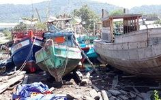 Kiên Giang chấm dứt việc giao bãi bồi ven biển cho hợp tác xã