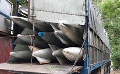 Tạm giữ hai xe tải chở bình nhiên liệu nghi của máy bay