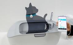 Toilet điện tử cho mèo giá 225 USD, bạn có muốn mua?