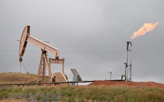 EIA hạ dự báo tăng trưởng sản lượng dầu thô của Mỹ năm 2019