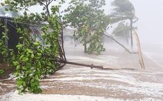 Sẽ có 12-13 cơn bão trên Biển Đông năm 2018
