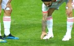 Sao Tây Ban Nha được tôn vinh tại World Cup vì… cứu chú chim