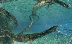 Phát hiện hóa thạch thằn lằn biển 75 triệu năm