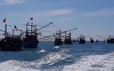 EU kéo dài cảnh báo thẻ vàng với hải sản VN đến tháng 1-2019