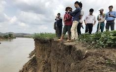 Công ty thủy điện phải bỏ tiền cho tỉnh 'vá' bờ sông