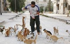 Trại 'tị nạn' cho mèo ở quốc gia bị chiến tranh giày xéo Syria