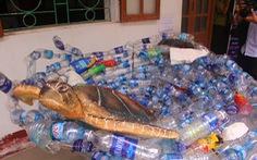 Sáng tạo nghệ thuật từ rác thải nhựa