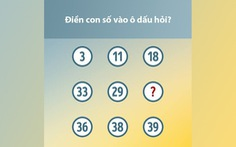 Những bài toán vui thử thách chỉ số IQ của bạn