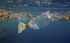 Hãy từ chối sử dụng sản phẩm nhựa dùng một lần